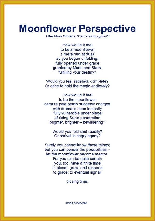 Post_2015-05-28B_Poem_MoonflowerPerspective