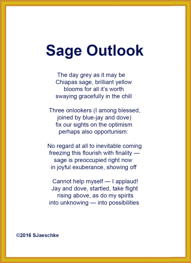 Post_2016-01-06_Poem_SageOutlook