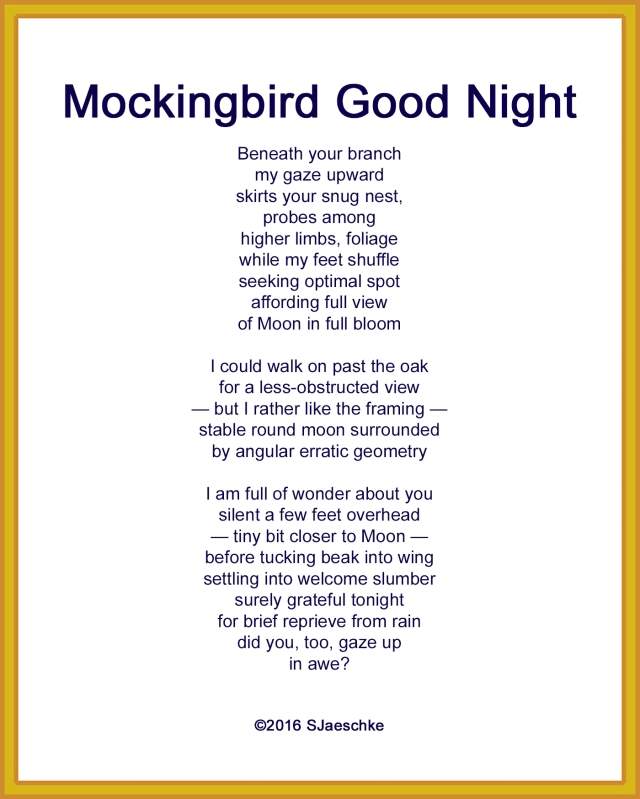 Post_2016-04-21_Poem_MockingbirdGoodNight