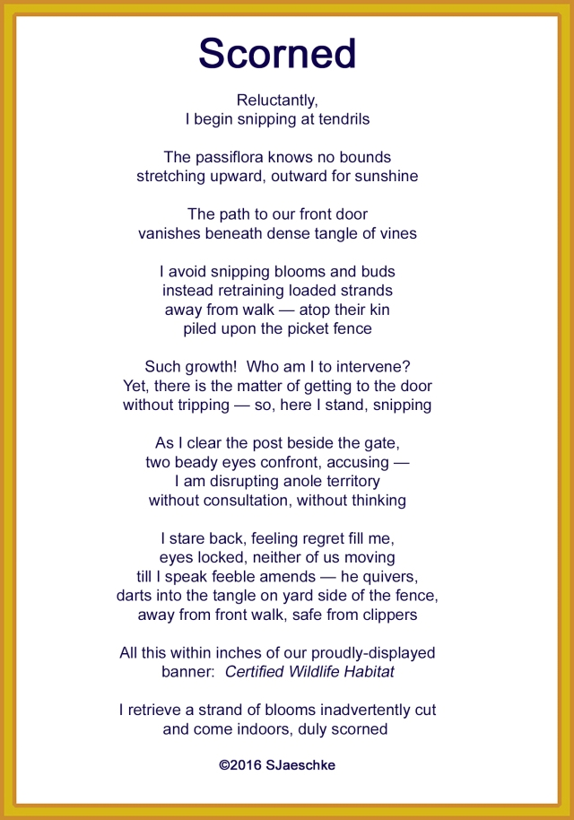 Post_2016-05-28_Poem_Scorned