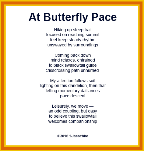 Post_2016-06-30_Poem_AtButterflyPace