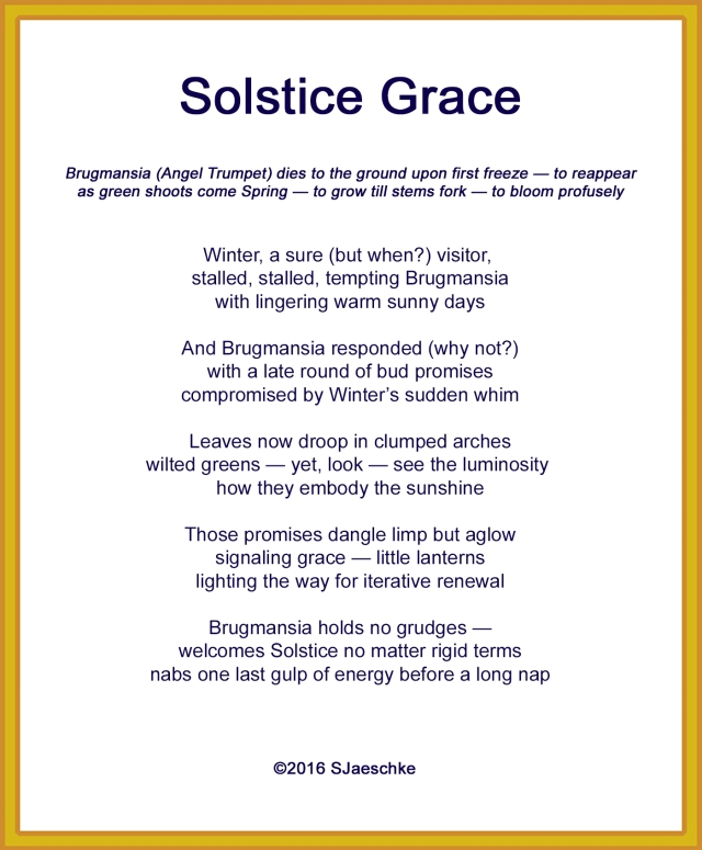 post_2016-12-21_poem_solsticegrace