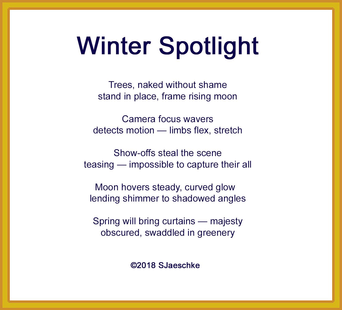 Post_2018-02-16_Poem_WinterSpotlight