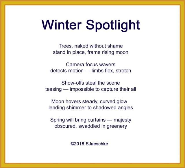 Post_2018-02-16_Poem_WinterSpotlight