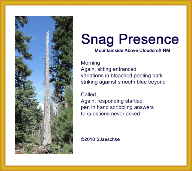 Post_2018-03-10_SnagPresence