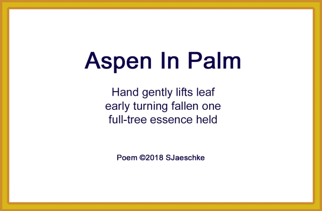 Post_2018-09-17_Poem_AspenInPalm