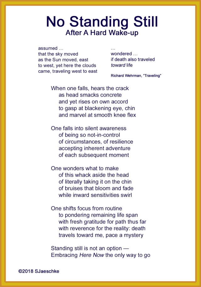 Post_2018-12-10_Poem_NoStandingStill
