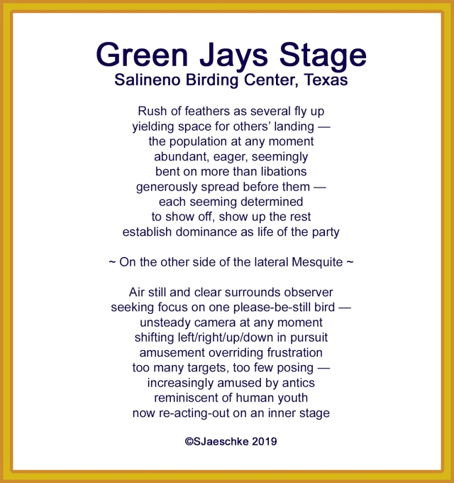 Post_2019-12-06_Poem_GreenJaysStage