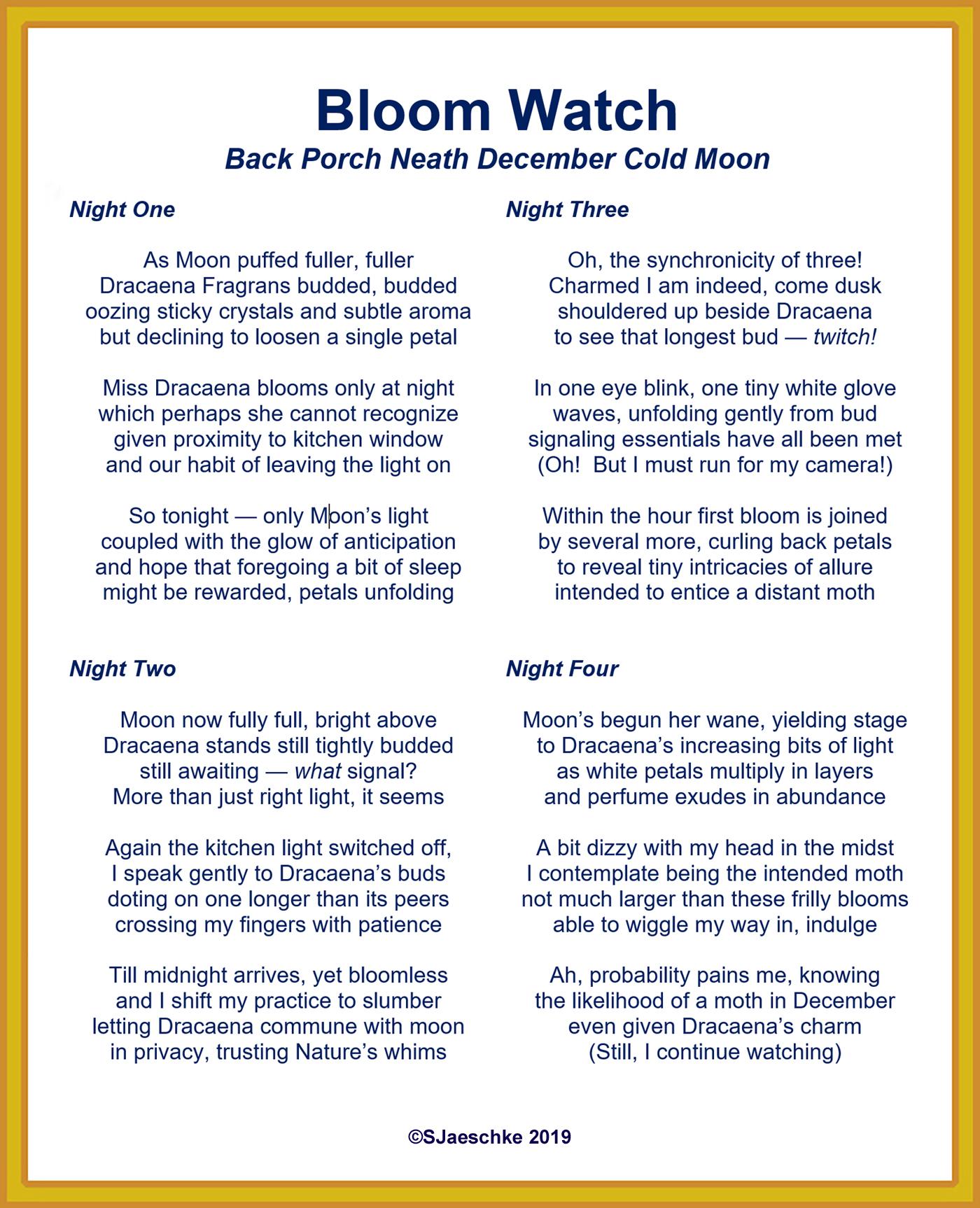 Post_2019-12-16_Poem_BloomWatch
